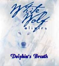Dolphins Breath Oil
