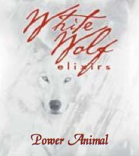 Power Animal Oil