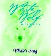 Whale's Song Oil