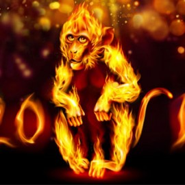 The Year of the Red Fire Monkey and the February New Moon