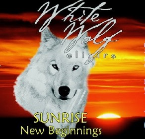 Sunrise – New Beginnings Oil
