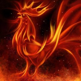 New Moon – Year of the Fire Rooster