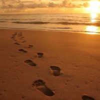 Walk Gently in this world, remembering sacredness and sanctuary