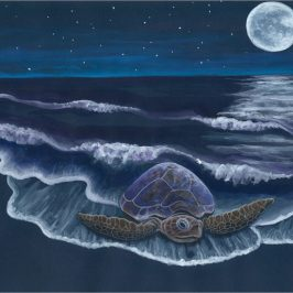 April 29th – 30th Full Moon Meditation with Honu
