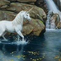 April 19th – 20th Full Moon Meditation Dedicated to the Unicorn