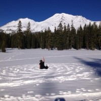 Mt. Shasta Journey 2014