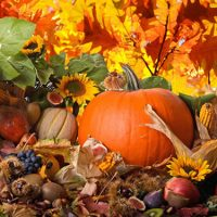 Autumn Equinox – Northern Hemisphere