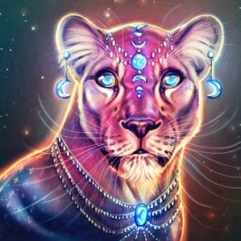 July 23 – New Moon to connect with lioness