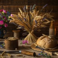 August 1st – Lammas The Festival of Bread and the Harvest