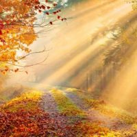 March  19th/20th – Autumn Equinox Celebration