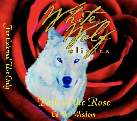 Path-of-the-Rose-Oil