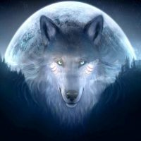January 10th – 11th Wolf Full Moon Meditation