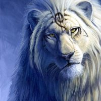 8.8.20 – Lion's Gate Meditation